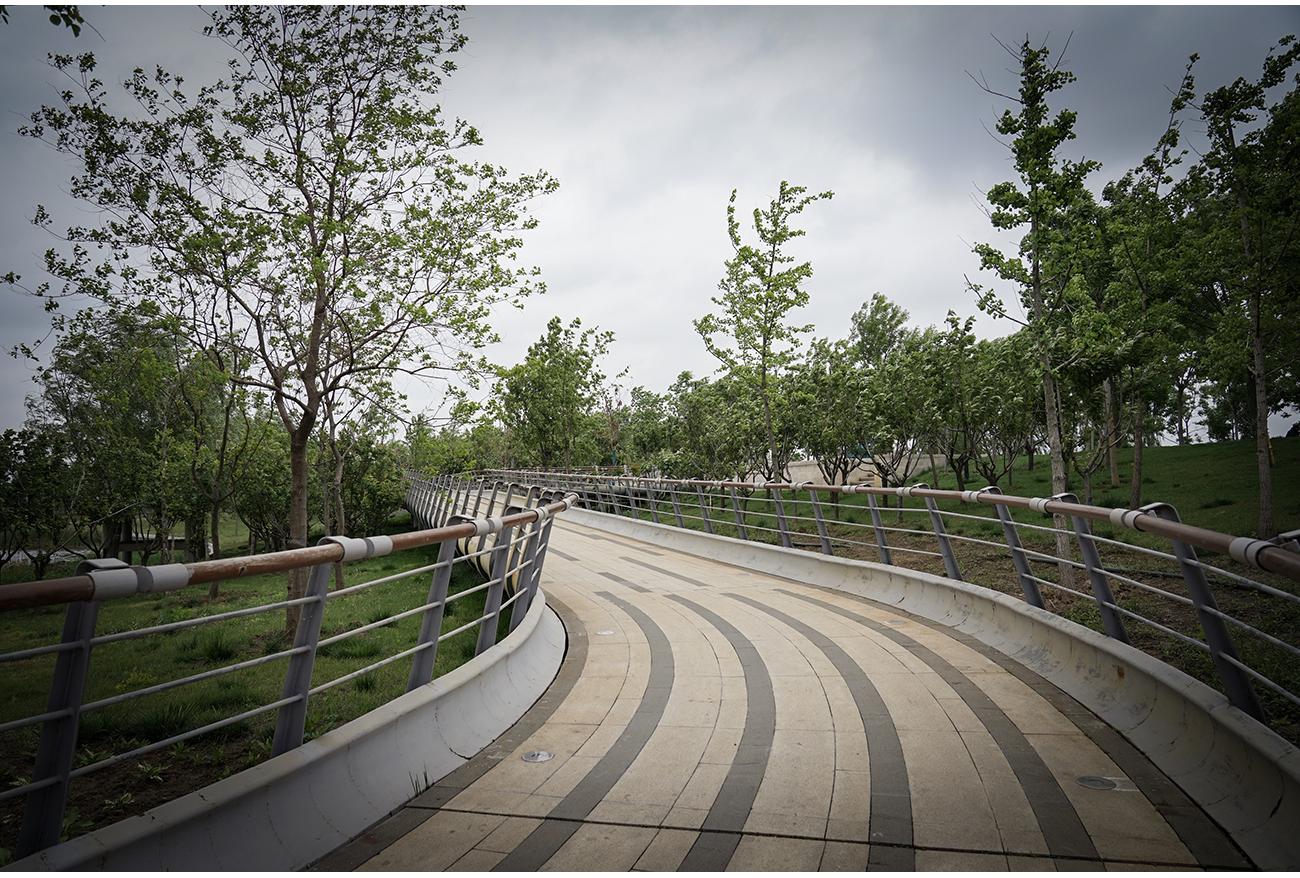 郑州白沙象湖_河南省郑州市象湖生态文化公园规划设计_北林地景